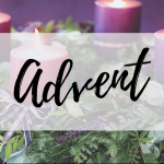 News for the First Sunday of Advent (29th November 2020)